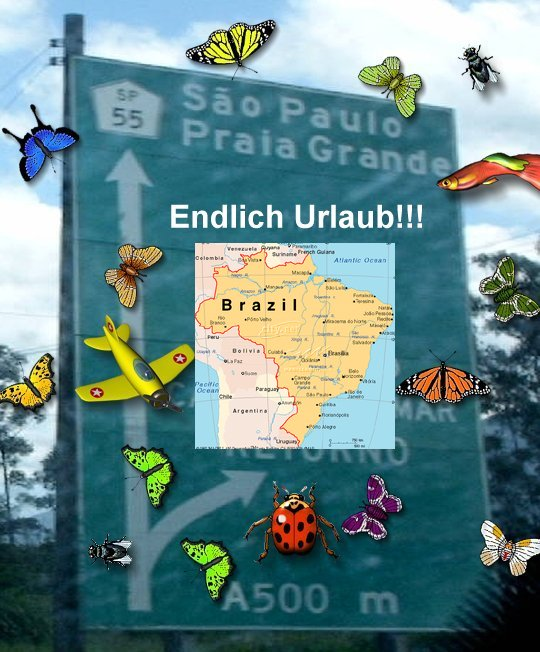 blog-saopaulourlaub1-1.jpg